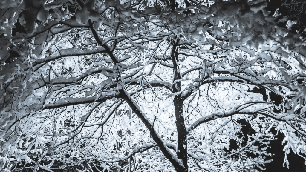 Schnee_in_Hannover_00007
